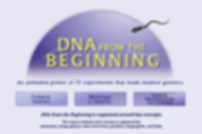 DNA from the Beginning.PNG
