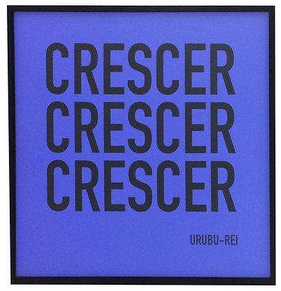 Crescer (Urubu-Rei), 2015 - Khalil Charif