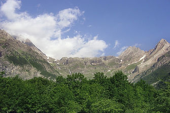 landscape-4884973_960_720.jpg