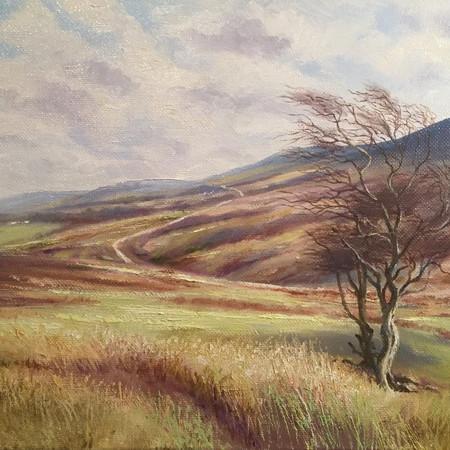 Edge of Dartmoor