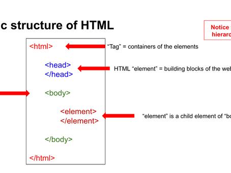 Basics of Web Programming (HTML Class 1)