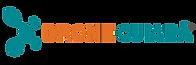 Logo Drone Cuiabá.png