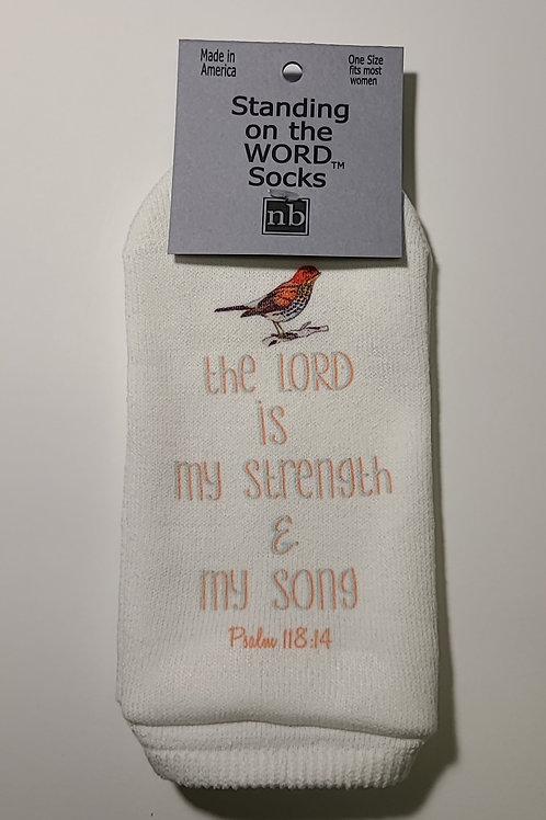 Standing on the Word Socks - Psalms 118:14