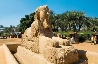 The Sphinx in Egypt