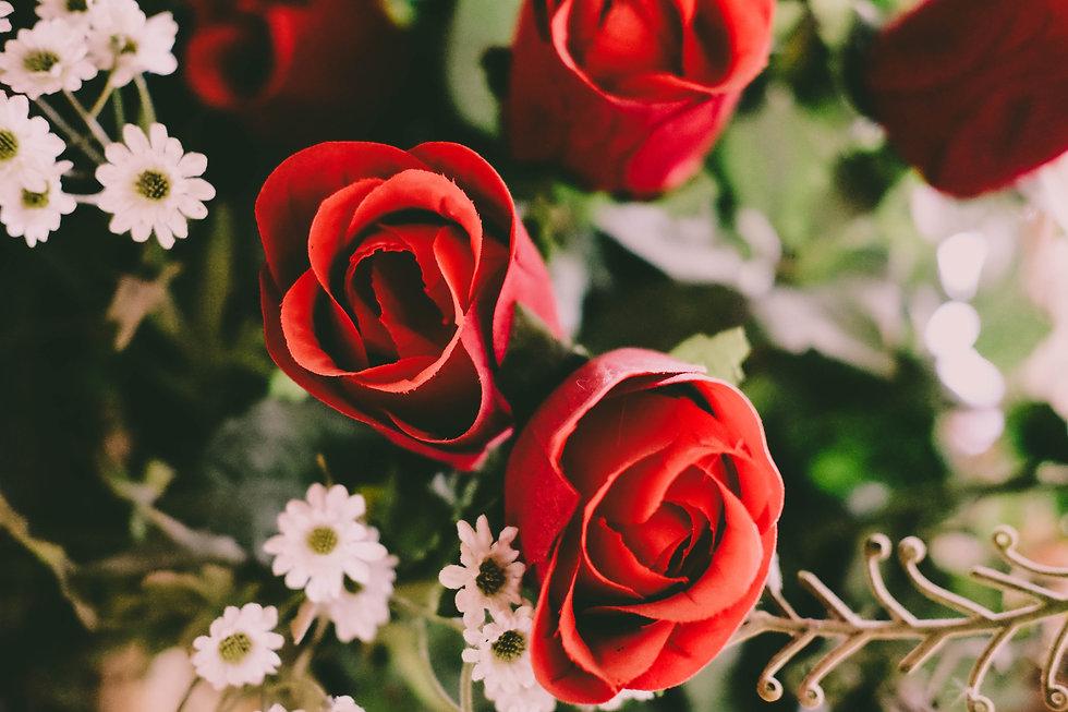 bloom-blossom-flora-flowers-285858.jpg