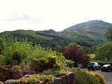 Moel Hebog from our patio