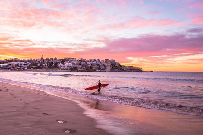Surfer Returns
