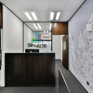 Skyline Projects Office