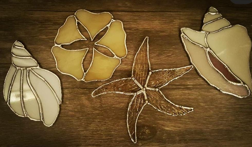 seashells.1.jpg