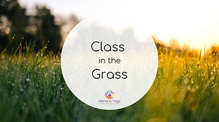 class in the grass (2).png