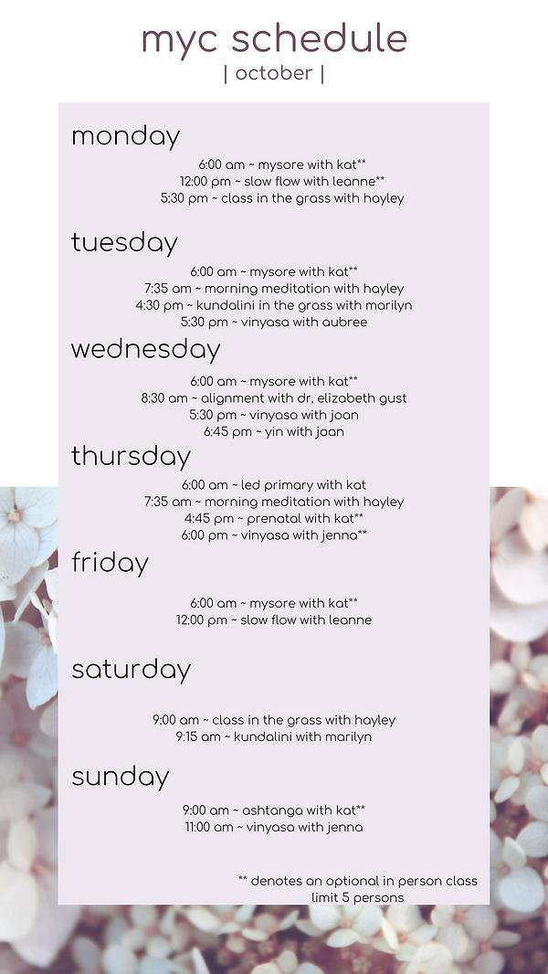 myc schedule.png