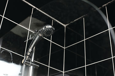 Shower screen - shiny.jpg