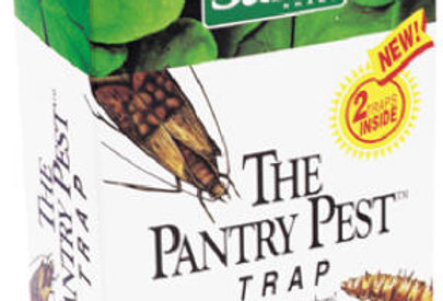 The Pantry Pest Trap - 2 pack
