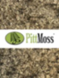 PittMoss.jpg