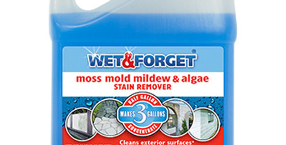 Wet & Forget Moss, Mold & Mildew Stain Remover - Half Gallon