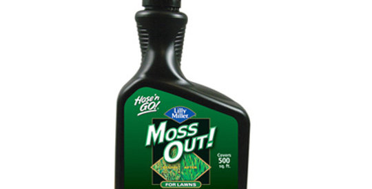 MOSS OUT!® For Lawns Liquid 32OZ