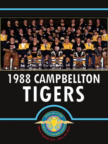 nbshf-2013-sport-card-campbellton-tigers