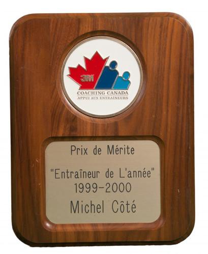 michel-cote-6-virtual-locker-picture-e15