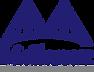 Mellanox-Technologies.png