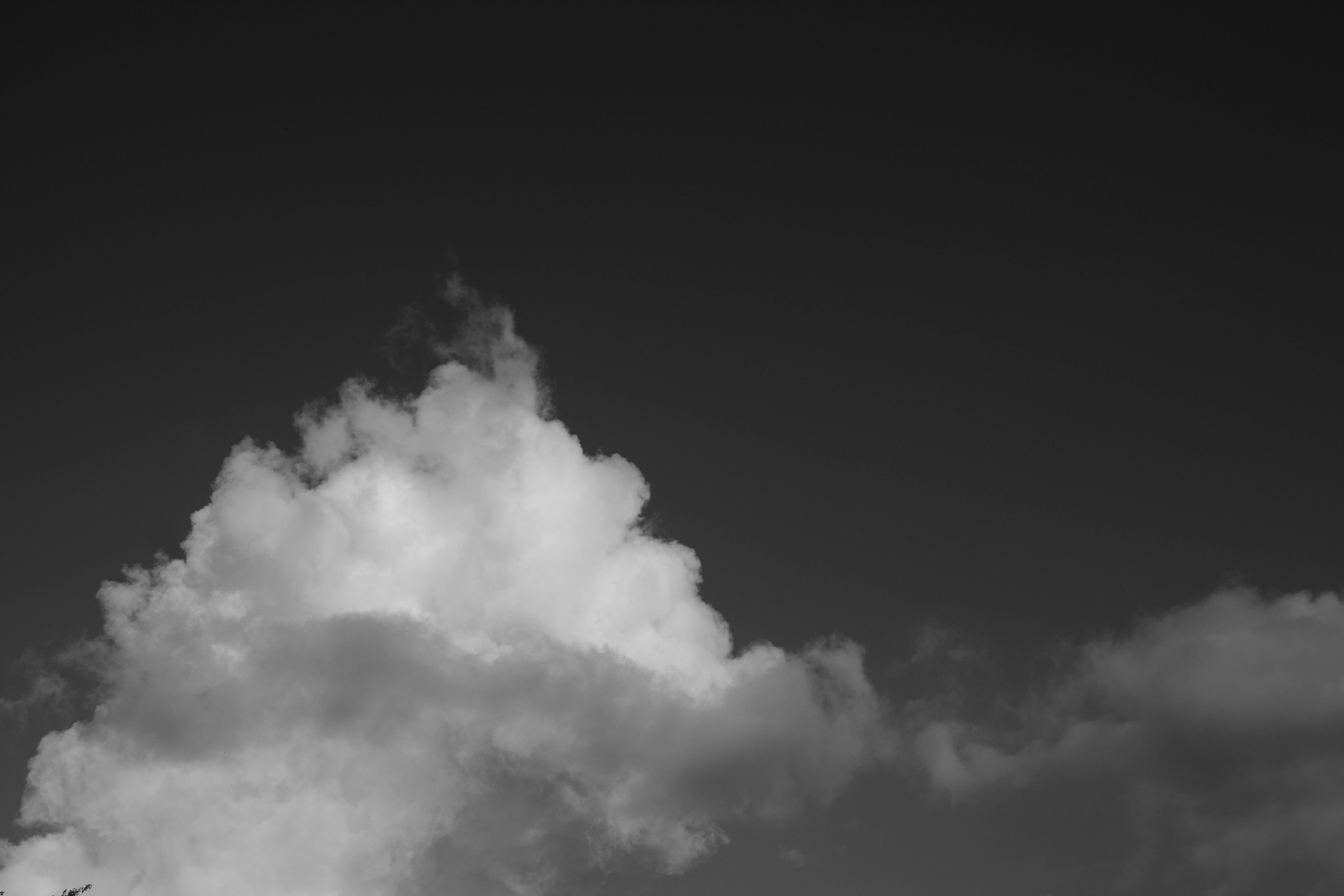 Cielo Totonaca