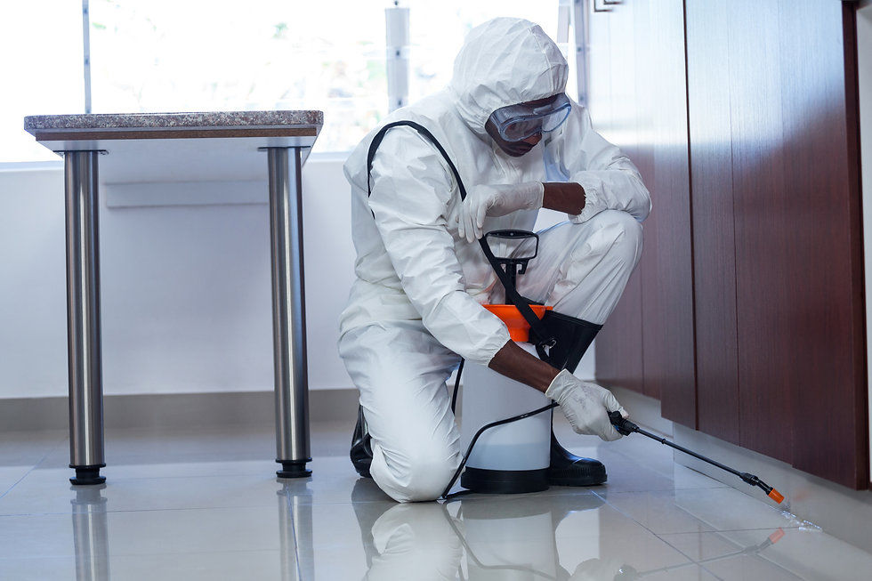 Man doing pest control at home.jpg