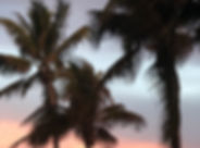 sunset in miami.JPEG