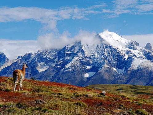 Chile - 12 Days