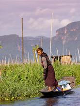Myanmar - 10 Days
