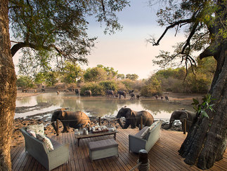 Best Zimbabwe tours and vacations - elephants at best African hotel