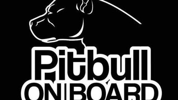 Pitbull on board decal