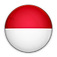indo-icon.png