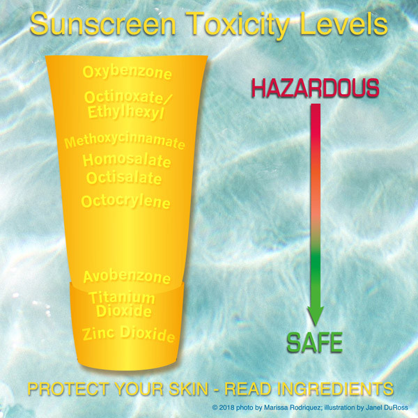 sunscreen toxicity level illustration