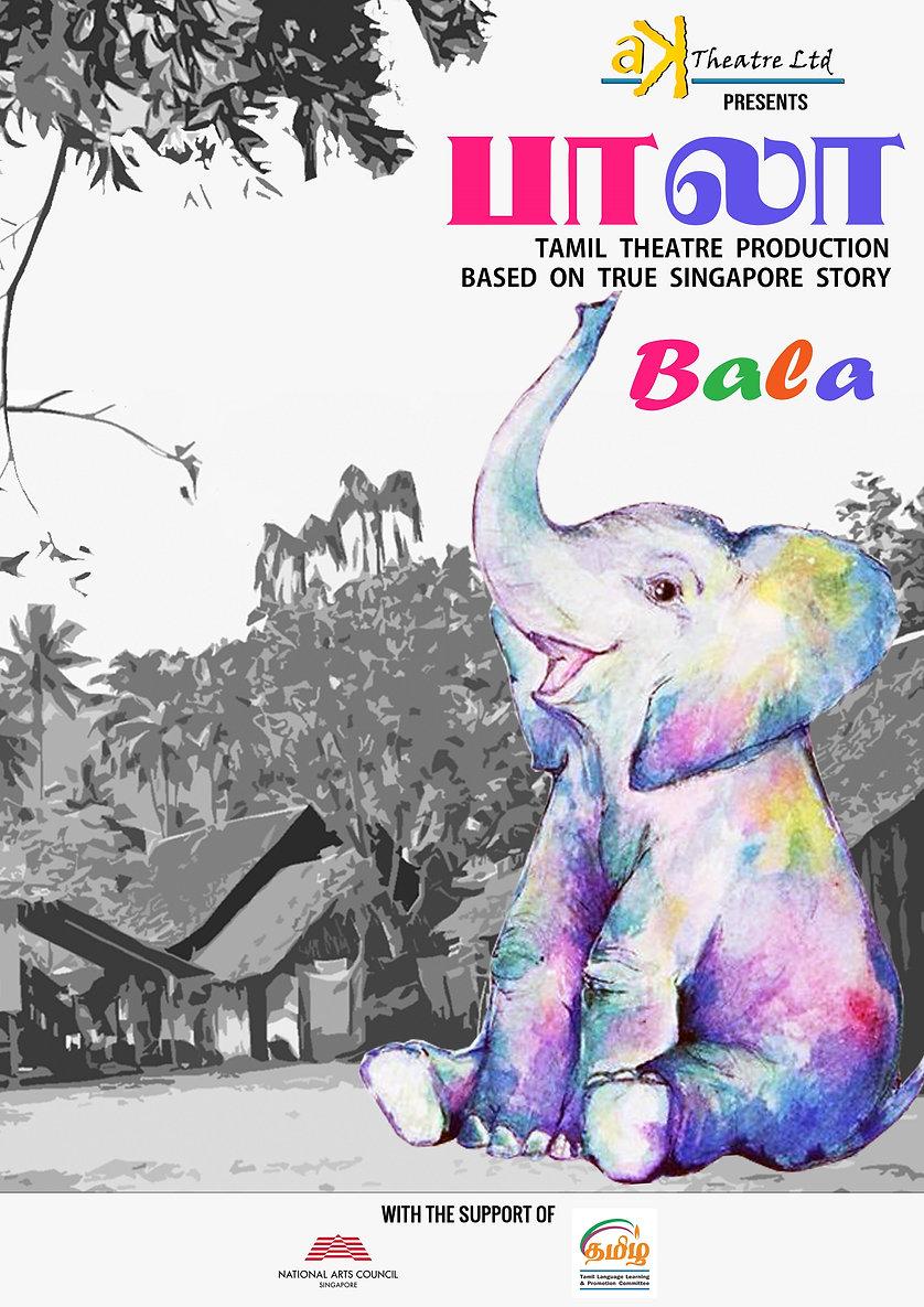 BALA - A4 Poster (Public) - Copy 2.jpg