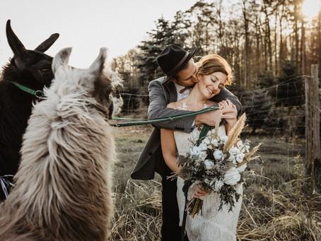"""""""Country Wedding Inspiration"""" - eine tierische Hochzeit auf dem Bauernhof"""