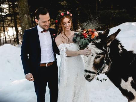 """""""Winter Wonderland Fairytale"""" - Märchenhafte Hochzeitsinspiration mit Eseln im Schnee"""
