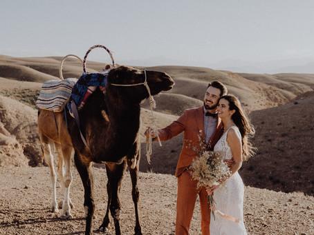 Wedding Elopement im Riad in Marrakesch - Heiraten in der Wüste Marokkos mit tierischen Begleitern