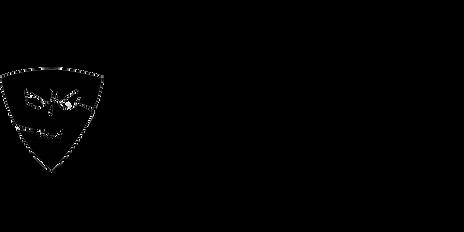 bigger logo.png