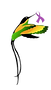 JACCRI LOGO_3_withouttext_trans.png