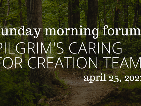 Forum: Creation Care Stories on April 25