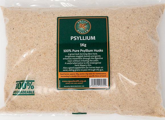 Equus Health Pysllium