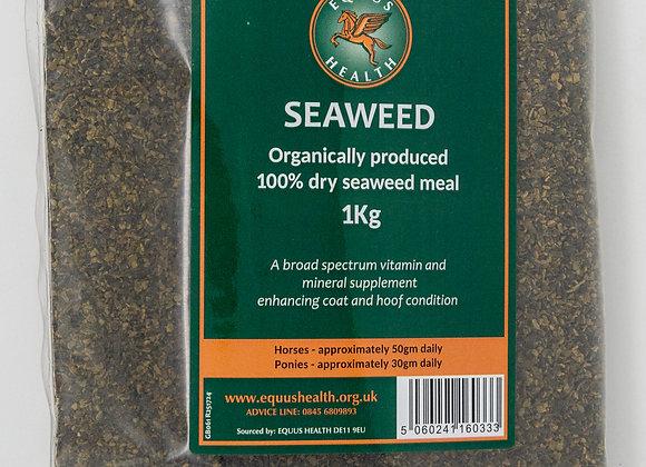 Equus Health Seaweed