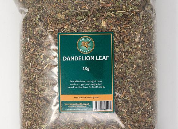 Equus Health Dandelion
