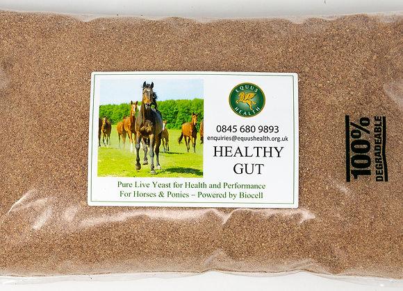 Equus Health Healthy Gut