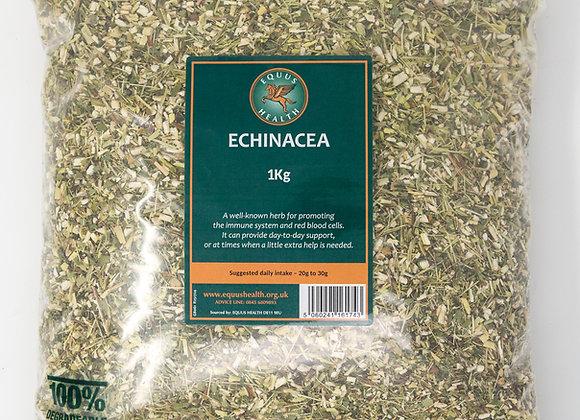 Equus Health Echinacea