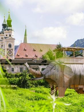 Elefant im Hofburggarten Brixen (BZ)