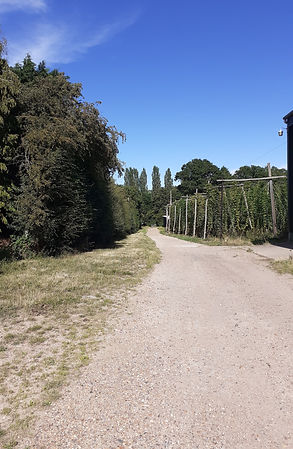 Gravel Biking, Kent Cycling Holidays | Canterbury, Kent | China Farm Barn