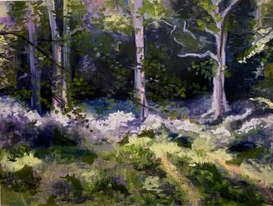 'Forest Walks'