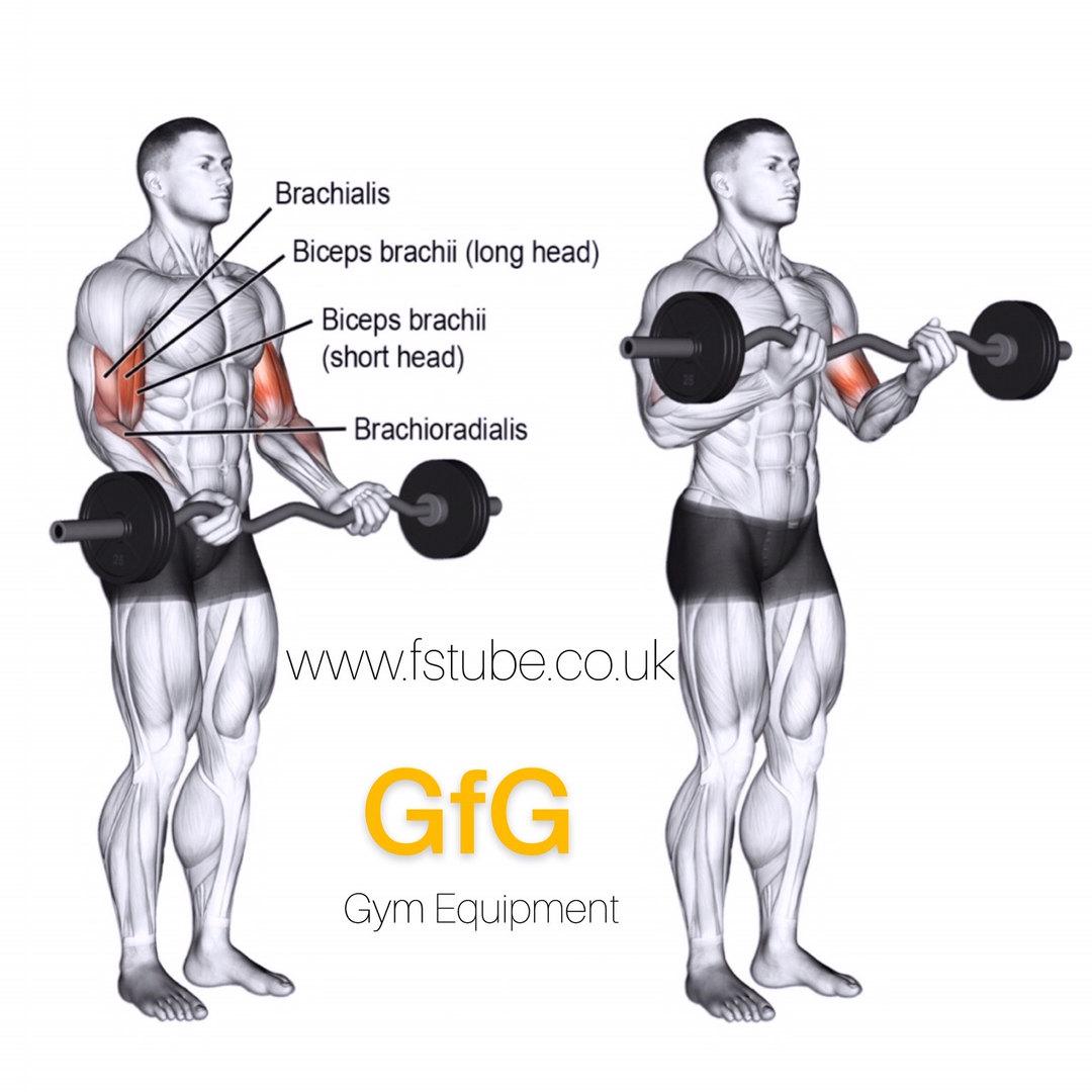 GfG AD1.jpg