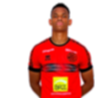 Mineiro 2.png