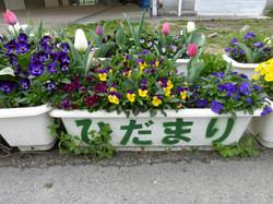 春のよろこび やさしい居場所